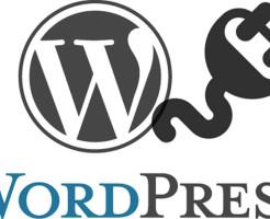 集客サイトで最低限導入しておきたいオススメのワードプレスプラグイン